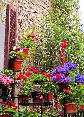 balcone-fiorito_ali