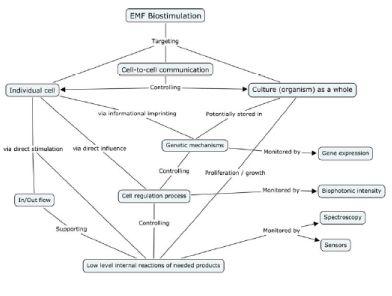 Biostimolazione elettromagnetica ai diversi livelli dei sistemi viventi