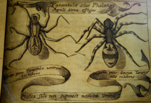 Il fenomeno del tarantismo tra magia e folklore