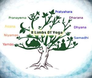Gli 8 stadi dello Yoga