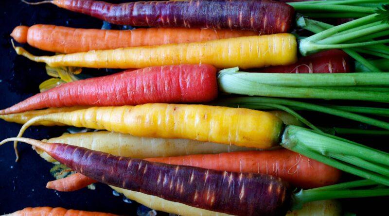 La protezione solare con l'oleolito di carota prodotto in casa