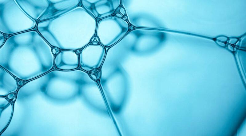 Ricerche cliniche per una innovazione nella teoria biologica dei farmaci e nella posologia
