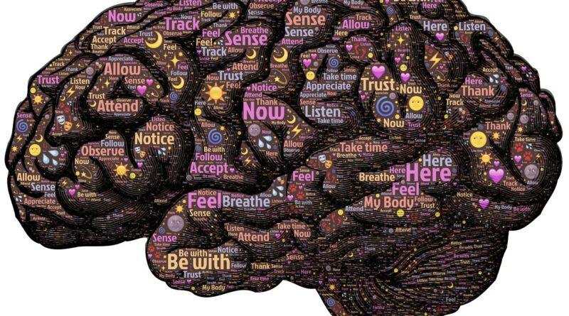 Cervello e coscienza: una teoria quantistica sul funzionamento della memoria